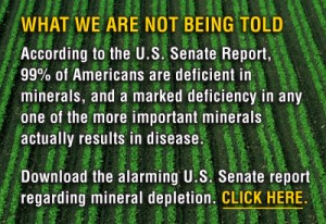 US Senate Report