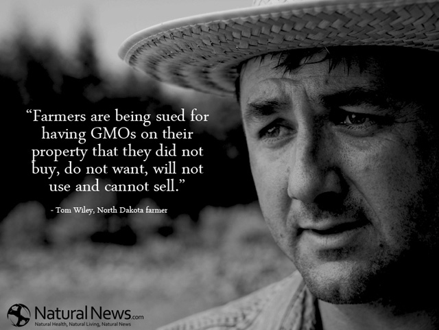 Farmers Sued by Monsanto