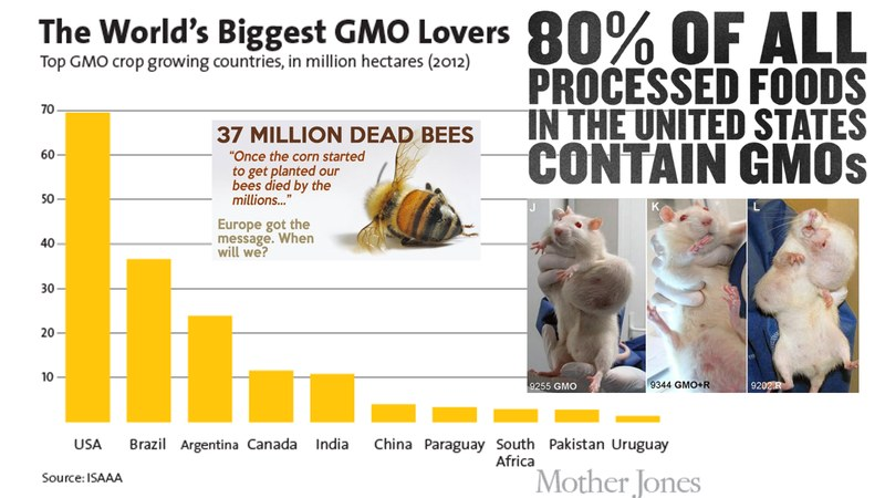 USA Loves GMO
