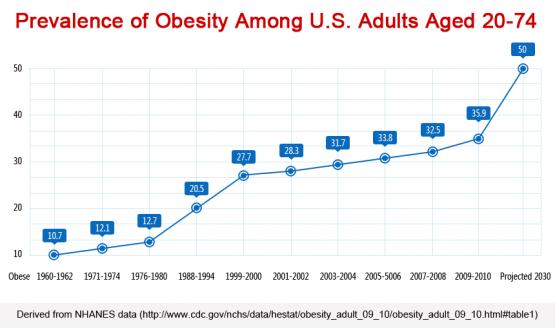 Obesity 1960 - 2030